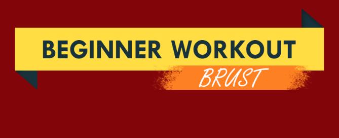 beginner-workout-brust