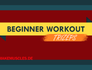 beginner-workout-trizeps