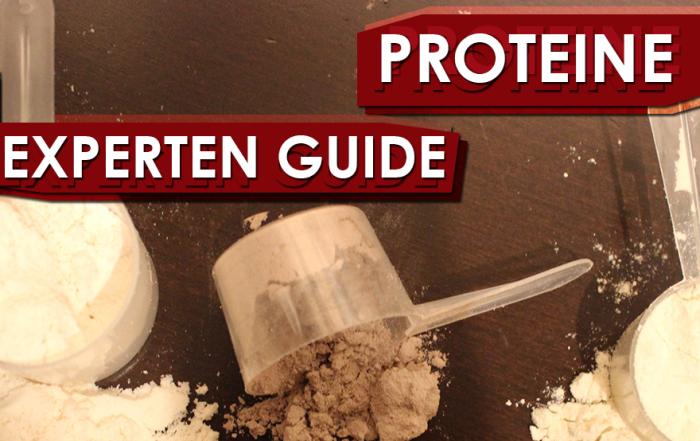 Experten Guide - Proteine