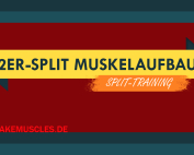 2er-Split Muskelaufbau