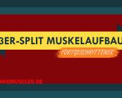 3er-Split Muskelaufbau: Gezielter Muskelaufbau für Fortgeschrittene