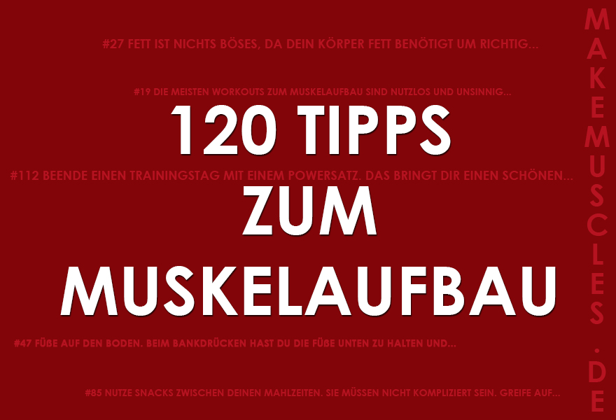 MUSKELAUFBAU TIPPS: 120 Tipps zum Muskelaufbau