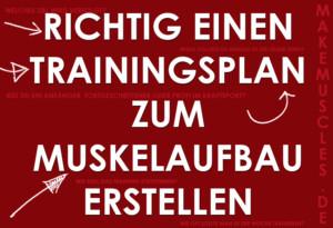 Richtig einen Trainingsplan zum Muskelaufbau erstellen