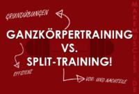 Ganzkörpertraining vs. Split-Training!