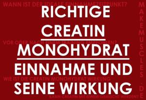 Richtige Creatin Monohydrat Einnahme und seine Wirkung