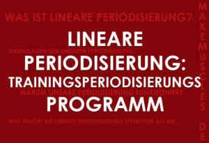 Lineare Periodisierung