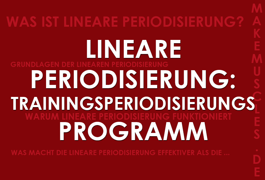 Lineare Periodisierung